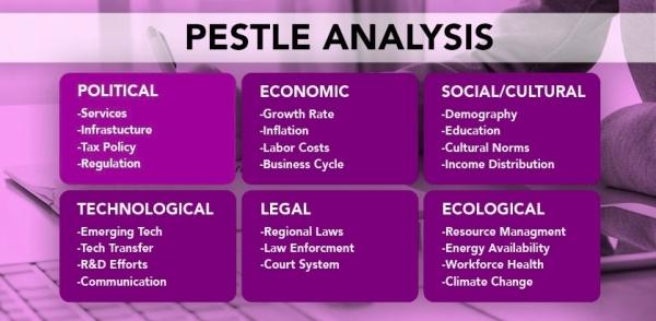 PESTLE Analysis – Focus on Politics