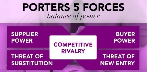 Porter's 5 Forces: Potential Entrants
