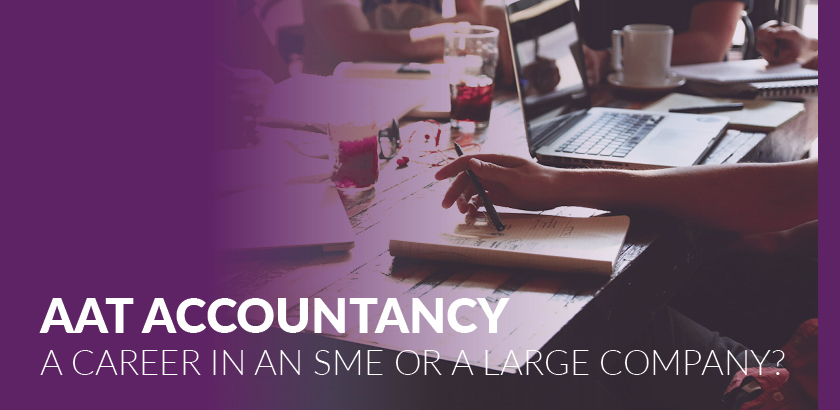 AAT Accountancy – should I work in an SME or a large company?